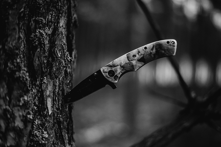 Knife in Tree
